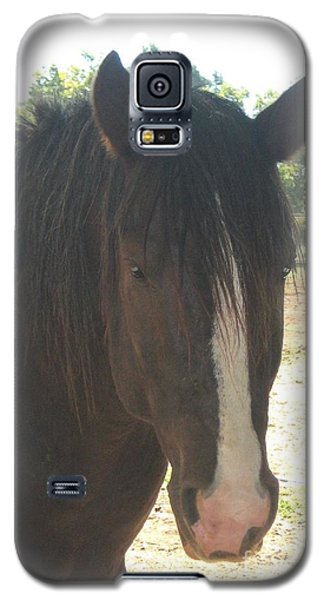 Galaxy S5 Case featuring the photograph Spirit by Wendy Coulson