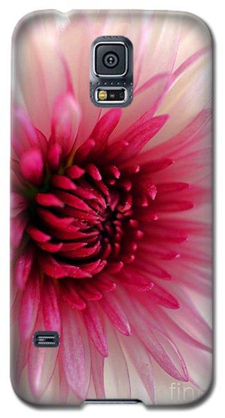 Splash Of Pink Galaxy S5 Case