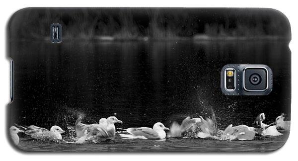 Galaxy S5 Case featuring the photograph Splashing Seagulls by Yulia Kazansky