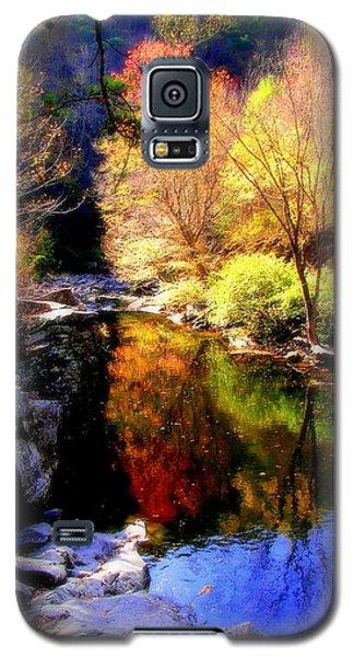 Splendor Of Autumn Galaxy S5 Case