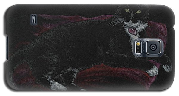 Spooky The Cat Galaxy S5 Case