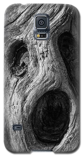 Galaxy S5 Case featuring the photograph Spooky Tree by Mitch Shindelbower
