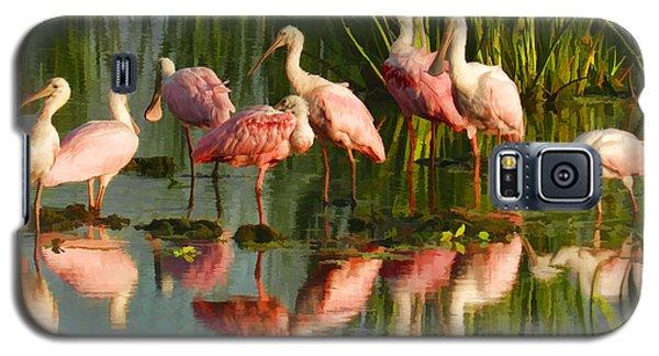 Spoonbill Congregation Galaxy S5 Case