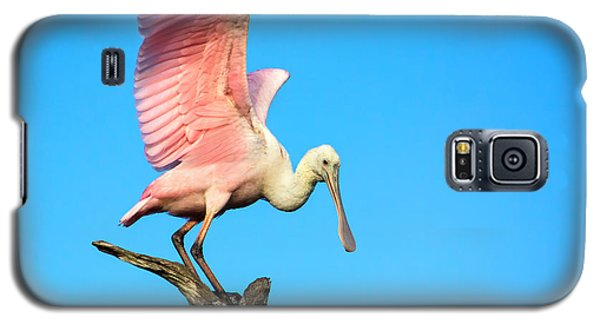 Spoonbill Flight Galaxy S5 Case by Mark Andrew Thomas