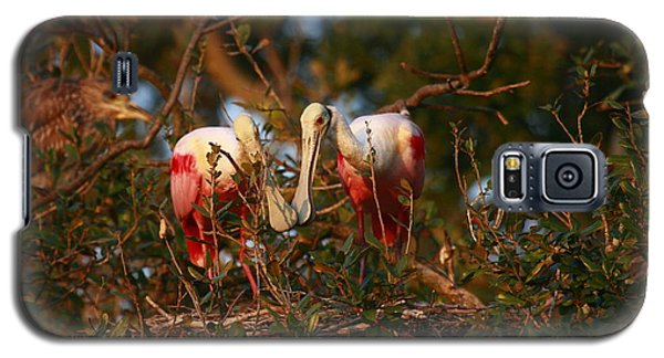 Galaxy S5 Case featuring the photograph Spoonbill Love Nest by John F Tsumas