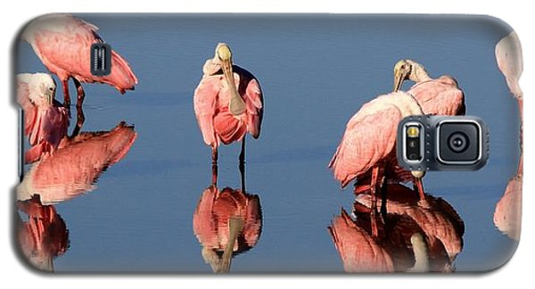 Spoonbill Reflections Galaxy S5 Case