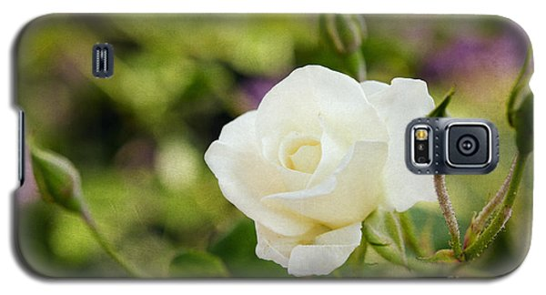 Spotlights On The White Rose Galaxy S5 Case by MaryJane Armstrong