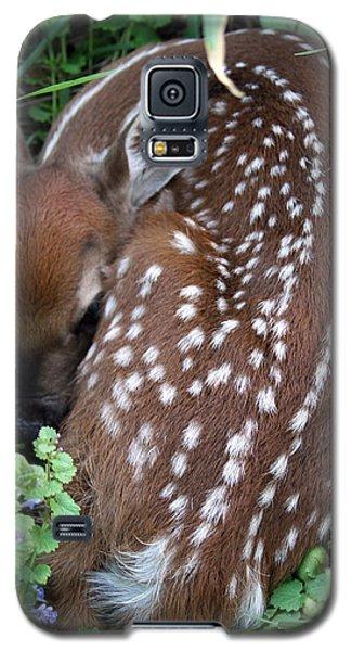 Spots Galaxy S5 Case