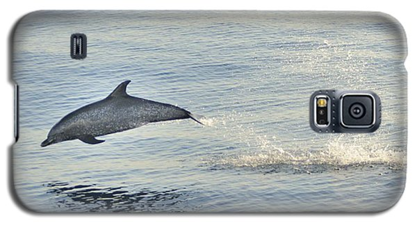 Spotted Dolphin Leaping Galaxy S5 Case