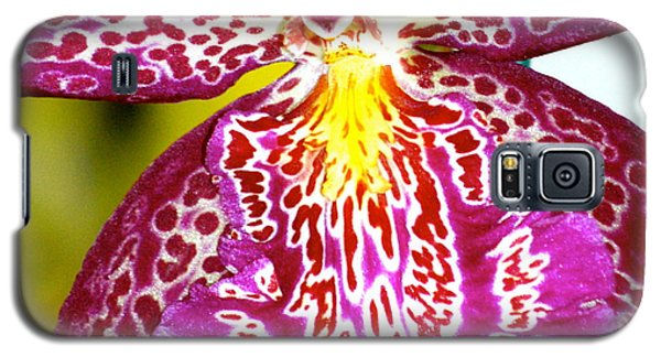 Galaxy S5 Case featuring the photograph Spotted Orchid by Lehua Pekelo-Stearns