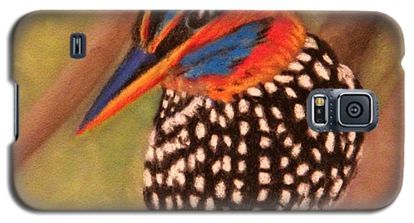 Spotted Wood Kingfisher Galaxy S5 Case