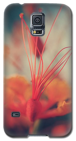 Spread The Love Galaxy S5 Case by Laurie Search
