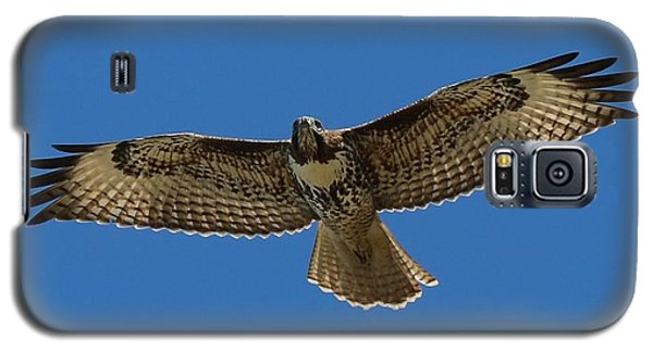 Spread Your Wings  Galaxy S5 Case by Christy Pooschke