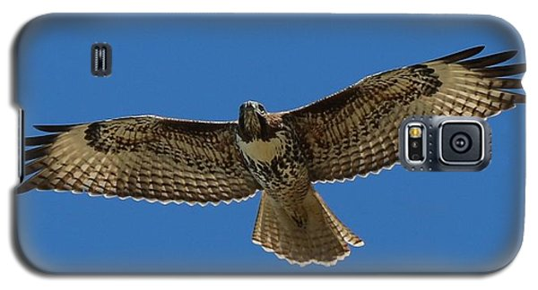 Galaxy S5 Case featuring the photograph Spread Your Wings  by Christy Pooschke