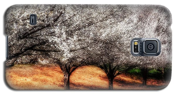 Spring Arches Galaxy S5 Case