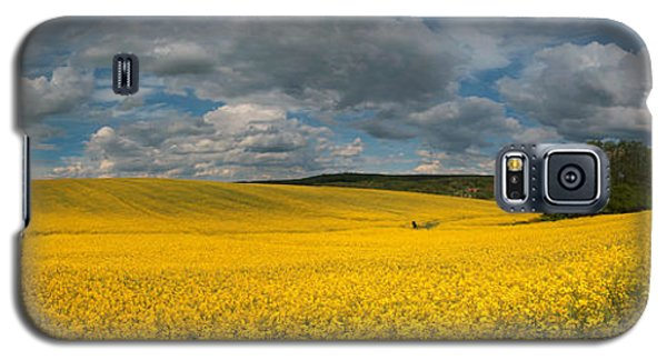 Spring At Oilseed Rape Field Galaxy S5 Case