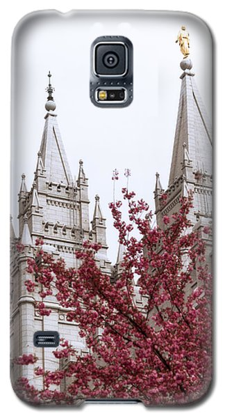The Sky Galaxy S5 Case - Spring At The Temple by Chad Dutson