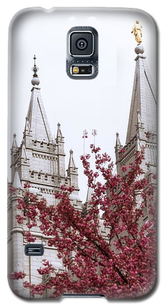 Spring At The Temple Galaxy S5 Case
