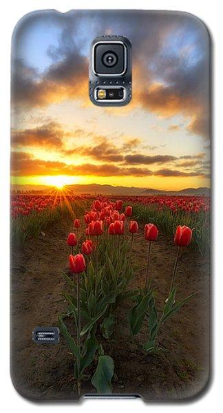 Spring Awakening Galaxy S5 Case by Ryan Manuel