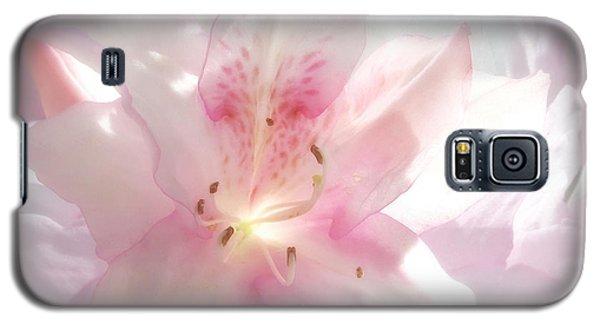 Spring Azalea Glow Galaxy S5 Case by Deborah Smith