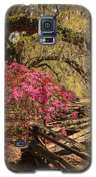 Galaxy S5 Case featuring the photograph Spring Beauty by Patricia Schaefer