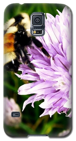 Spring Bee Galaxy S5 Case