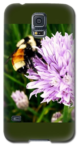 Spring Bee Galaxy S5 Case