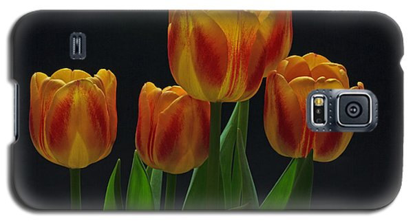 Galaxy S5 Case featuring the photograph Spring by Robert Pilkington