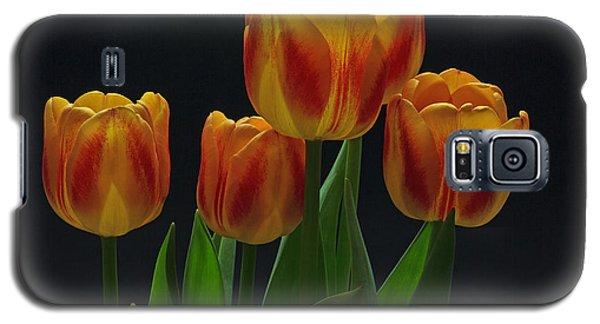 Spring Galaxy S5 Case by Robert Pilkington
