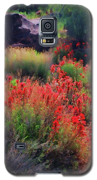 Galaxy S5 Case featuring the photograph Spring Blooms by Barbara Manis