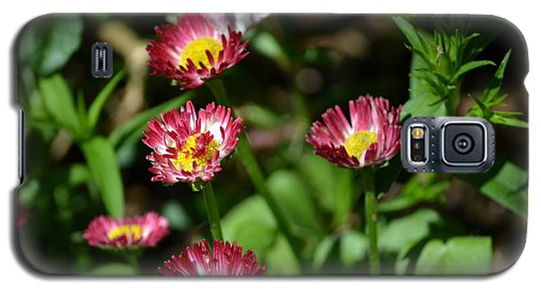 Galaxy S5 Case featuring the photograph Spring Blooms by Tara Potts