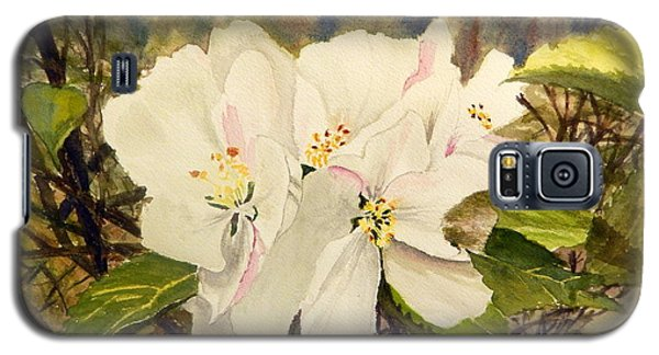 Spring Blossoms Galaxy S5 Case by Betty-Anne McDonald