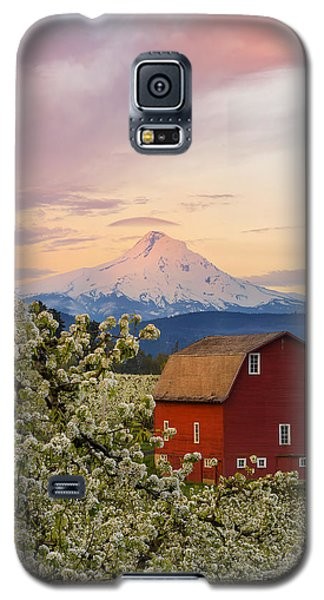 Spring Blossoms Sunrise Galaxy S5 Case by Ryan Manuel