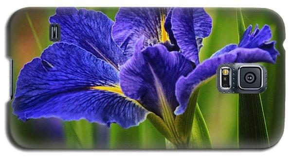 Spring Blue Iris Galaxy S5 Case