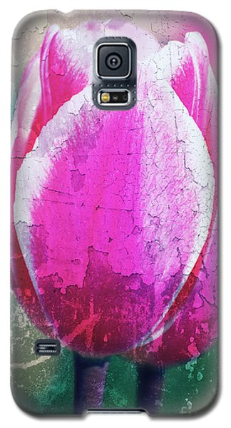 Spring Broken... Galaxy S5 Case