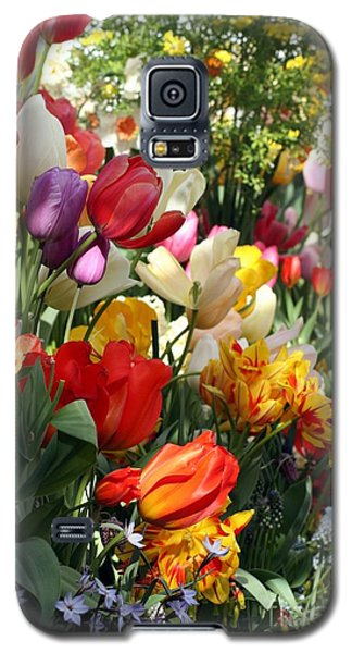 Galaxy S5 Case featuring the photograph Spring Bulb Bonanza by Mary Lou Chmura
