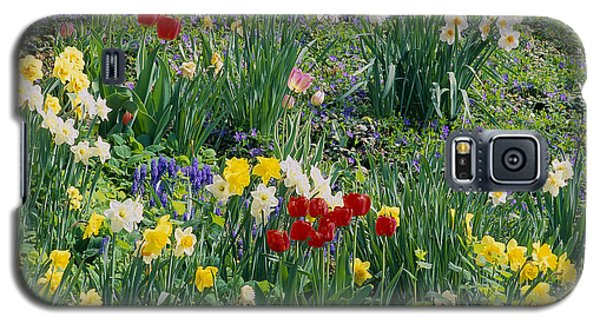 Galaxy S5 Case featuring the photograph Spring Bulb Garden by Alan L Graham