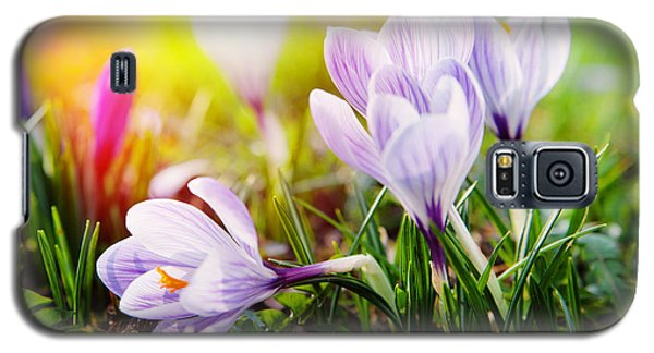Galaxy S5 Case featuring the photograph Spring by Christine Sponchia