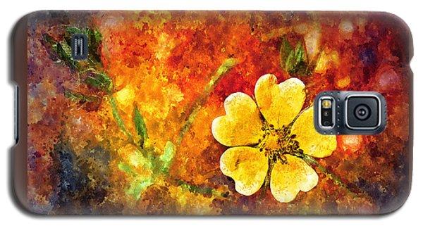 Spring Color Galaxy S5 Case