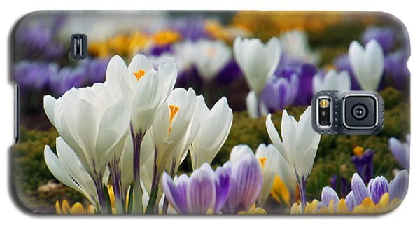 Galaxy S5 Case featuring the photograph Spring Crocus by Dianne Cowen
