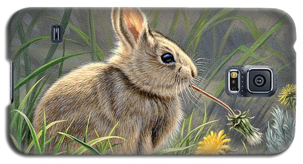 Rabbit Galaxy S5 Case - Spring Cottontail by Paul Krapf