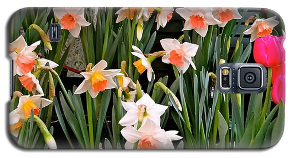 Galaxy S5 Case featuring the photograph Spring Daffodils by Ira Shander