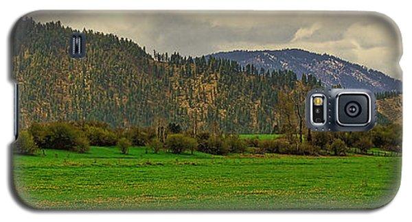 Spring Dandylions Galaxy S5 Case