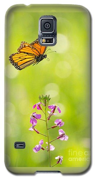 Spring Delight Galaxy S5 Case