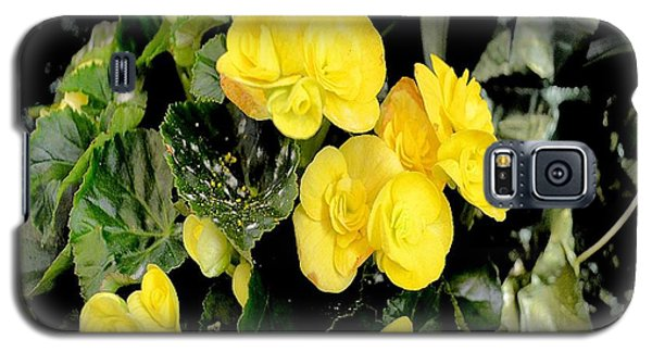 Galaxy S5 Case featuring the photograph Spring Delight In Yellow by Luther Fine Art