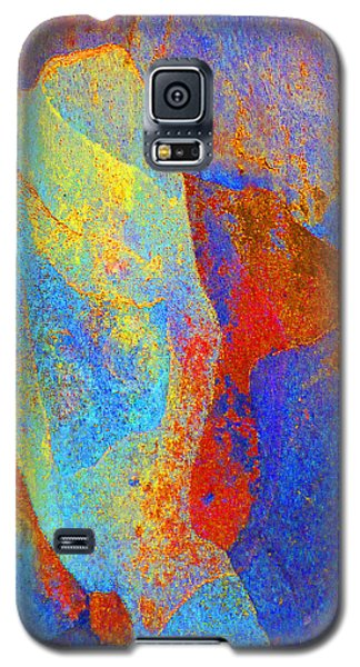 Spring Eucalypt Abstract 13 Galaxy S5 Case