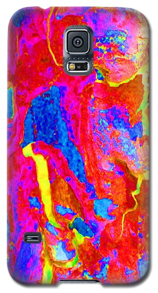 Spring Eucalypt Abstract 14 Galaxy S5 Case