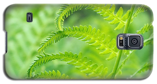 Spring Fern Galaxy S5 Case