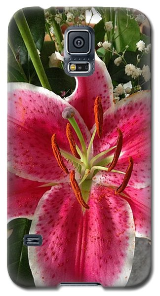 Spring Flower Collection 3 Galaxy S5 Case