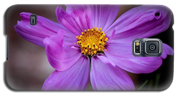 Cosmo Spring Flower Horizontal Galaxy S5 Case